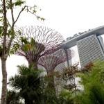 Отель Marina Bay Сингапур