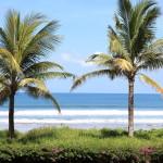 Oceanfront Garden area