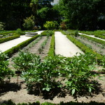 Ботанический сад в Мадриде